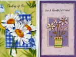 Wrapped thinking of you and friendship card assortment