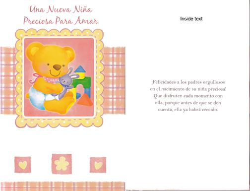 Spanish baby girl card spanish new baby girl card 1 dozen m4hsunfo