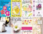 *120 Assorted Female Family Birthday Cards - 16.5 cents per card